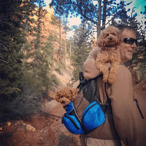 Sammy and Sophie at Bryce Canyon National Park