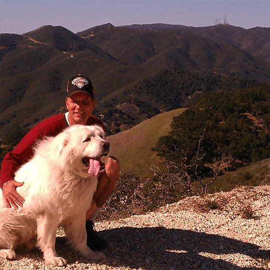 Our great Pyrenees